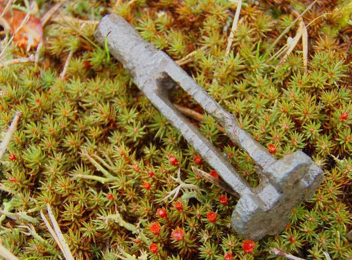Nøkkel fra Vikingtid funnet av NMF-medlem Trygve Måleng